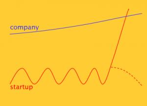 startup vs company